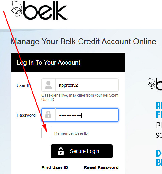 pay belk credit card